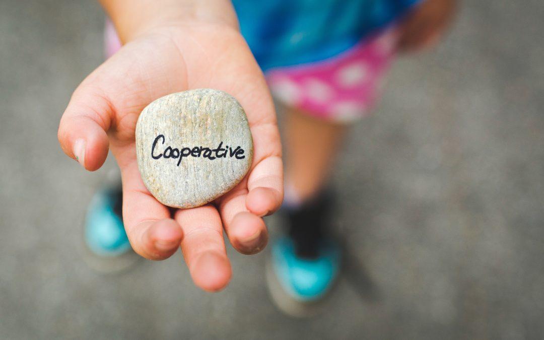 Introducció a l'economia social i cooperativa